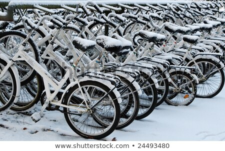 a row of snowcovered bikes stock photo © hofmeester