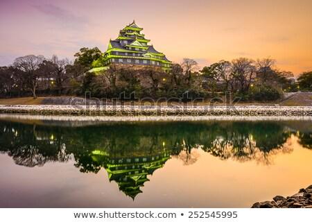 Ver castelo Japão espaço viajar Ásia Foto stock © pavel_bayshev