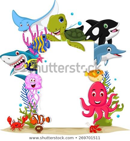 Tiburón sonrisa mar océano azul Foto stock © dagadu