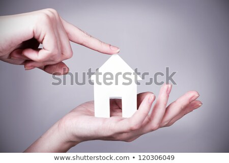 your dream home in the form of future goals  Stock photo © OleksandrO