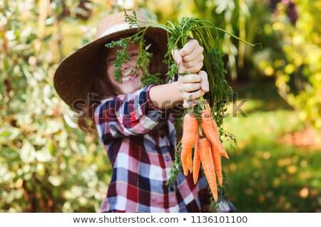 funny veggie garden Stock photo © pcanzo
