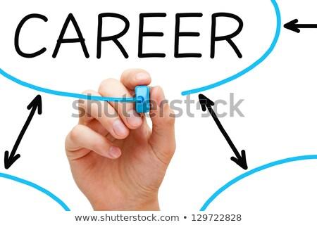 Stock photo: Career Flow Chart Blue Marker