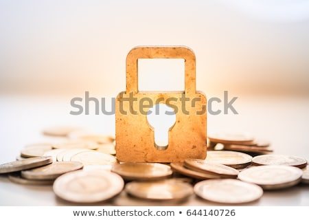 concept for money protection stock photo © Grazvydas