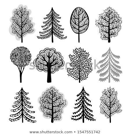 collection of lacy trees vector winter stock photo © butenkow