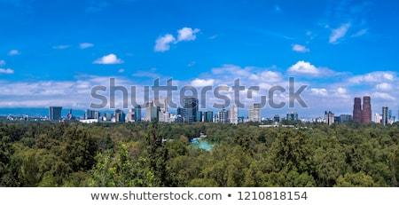 Park Mexikóváros függőleges kilátás zöld sziluett Stock fotó © jkraft5