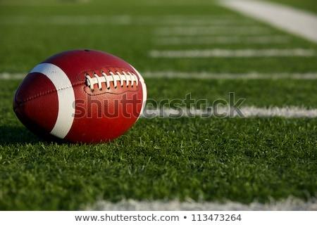amerikai · futball · közelkép · vágási · körvonal · ősz · bőr - stock fotó © 33ft
