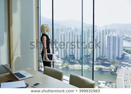 брюнетка · деловая · женщина · прикасаться · виртуальный · прозрачный · ключевые - Сток-фото © lunamarina