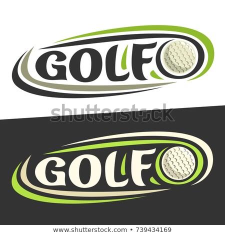рук вокруг мяч для гольфа иллюстрация дизайна белый Сток-фото © alexmillos