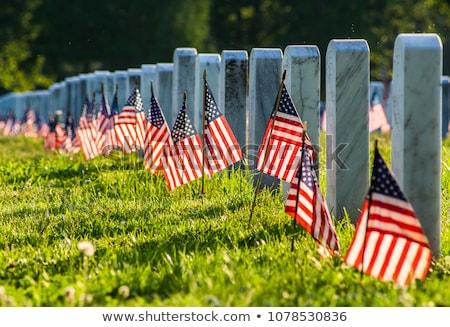 militar · cementerio · bandera · de · Estados · Unidos · guerra · bandera · muertos - foto stock © ca2hill