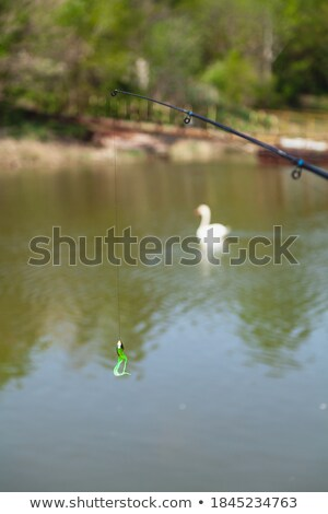 two spinnings with baits Stock photo © Mikko