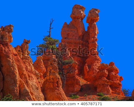 beautiful landscape in Bryce Canyon with sandstone pillar like a Stock photo © meinzahn
