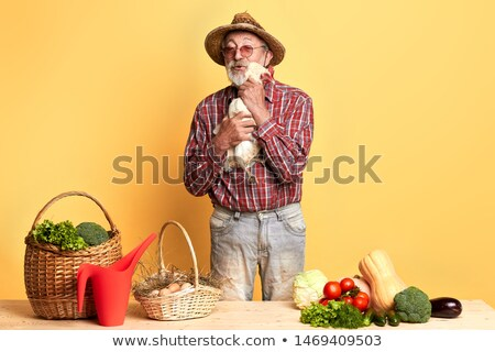 lettuce in wicker basket and straw hat stock photo © marimorena