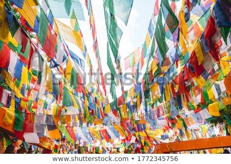Indië · vlag · kaart · land · vorm · illustratie - stockfoto © michaklootwijk