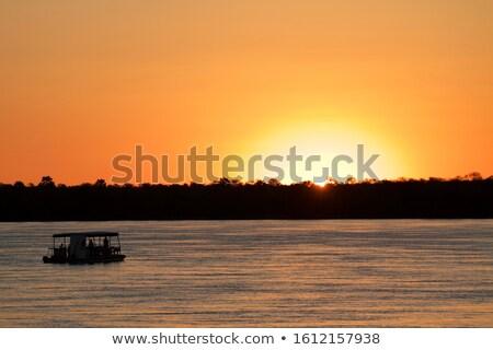 african sunset on zambezi stock photo © artush
