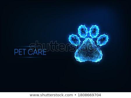 Veeartsenijkundig hond dierenarts geïsoleerd witte oog Stockfoto © fantazista