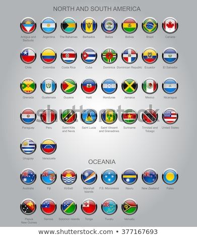 Térkép zászló gomb Grenada vektor kép Stock fotó © Istanbul2009