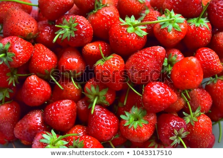 érett piros eper finom organikus közelkép Stock fotó © Klinker