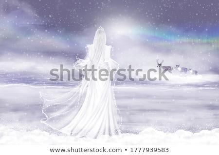 Gyönyörű hó királynő portré trendi kék Stock fotó © Anna_Om