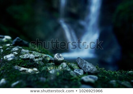Tranquil flowing waterfall in a lush rainforest Stock photo © pzaxe