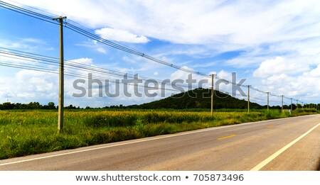 electric poles in a field stock photo © kotenko
