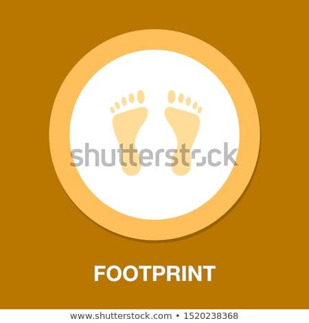 human foot Stock photo © bluering