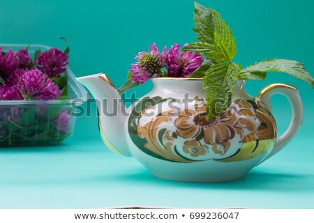 Teapot and red clovers isolated Stock photo © marimorena