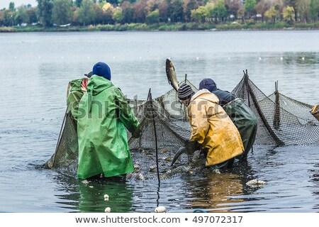 dob · halászháló · halász · citromsárga · hal · naplemente - stock fotó © cienpies