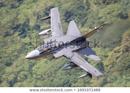 Vadászrepülő illusztráció repülőgép tudomány sebesség fehér Stock fotó © bluering