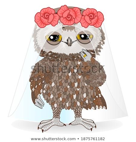 owls spouses Stock photo © adrenalina
