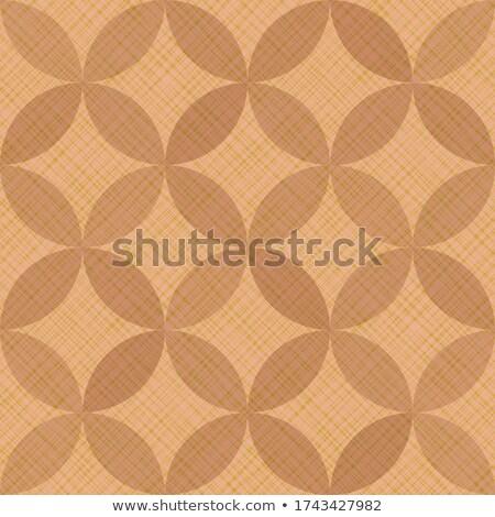 Vector Seamless Lines Petal Shapes Lattice Pattern Stock photo © Samolevsky