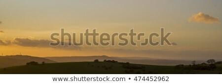 Güney yol gün batımı görmek işaretleyici gönderemezsiniz Stok fotoğraf © suerob