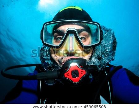 акула подводного маске иллюстрация природы морем Сток-фото © adrenalina