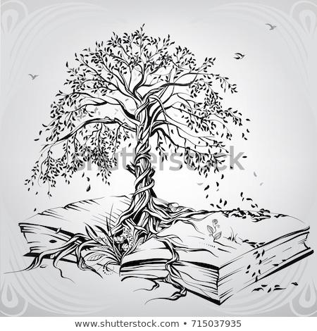 paysage · livre · ouvert · arbre · arbre · vert · oiseaux · écologie - photo stock © andrei_