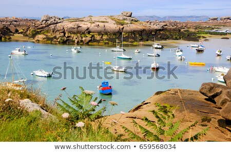 Low tide in Perros-Guirec  Stock photo © benkrut