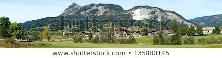 Alpesi tájkép kilátás Alpok fa utazás Stock fotó © dirkr