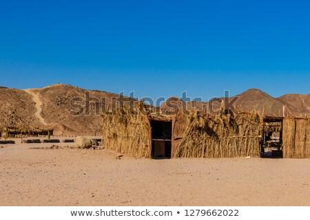 berber twigs Stock photo © wildman