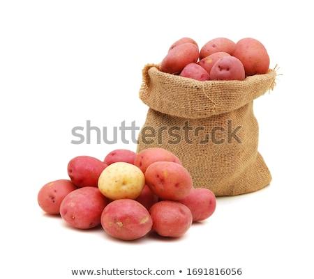 Greggio rosso patate fresche isolato Foto d'archivio © zhekos