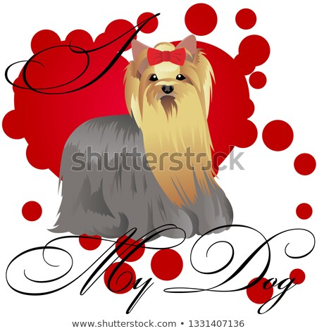 Yorkshire Terrier dog stamp. Stock photo © FER737NG