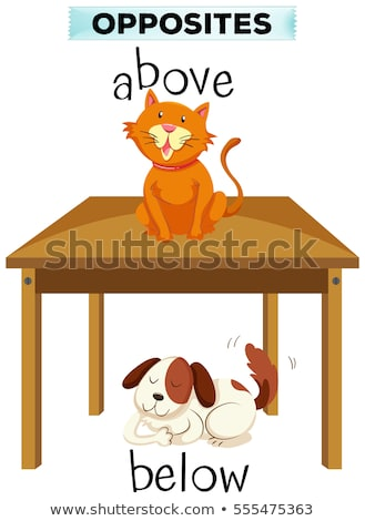 Opposite words for above and below Stock photo © bluering