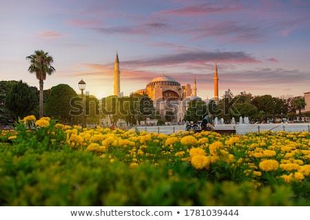 mecset · Isztambul · Törökország · épület · építészet · vakáció - stock fotó © givaga