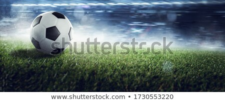 Futbol topu çim panorama 3D altın Stok fotoğraf © andreasberheide