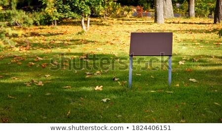 tráfico · signos · muchos · blanco · carretera · camión - foto stock © simply