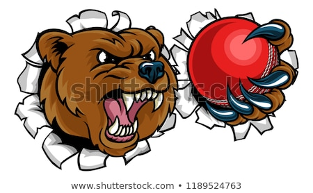 Bear Holding Cricket Ball Breaking Background Stock photo © Krisdog