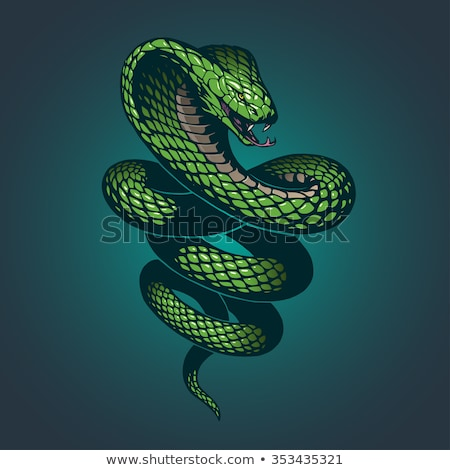 green cobra snake cartoon icon vector illustration stock photo © cidepix