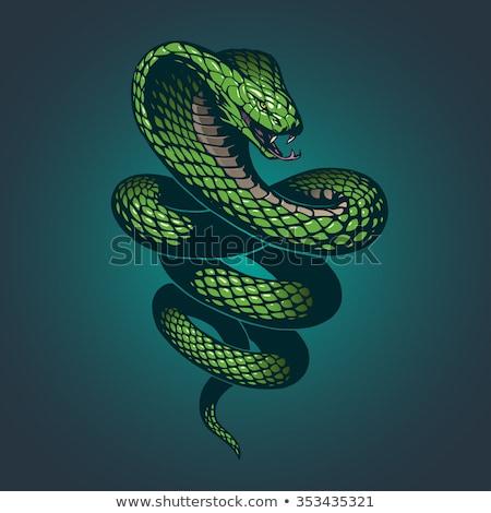 зеленый · змеи · Cartoon · улыбка · счастливым - Сток-фото © cidepix