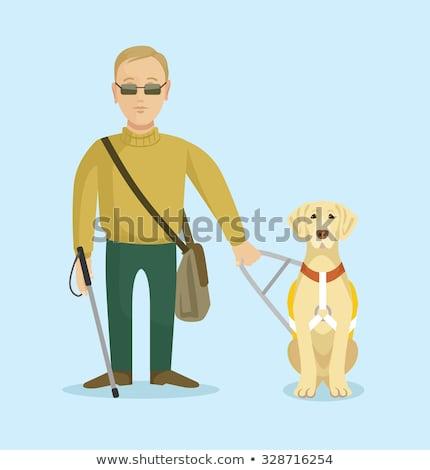 Cartoon labrador riem illustratie labrador retriever lopen Stockfoto © cthoman