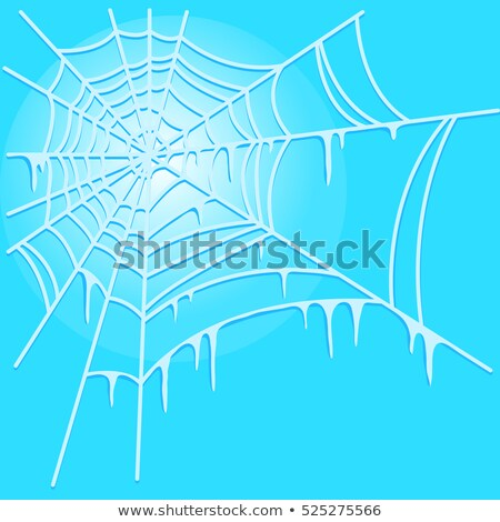 Icy cobweb isolated on blue background. Vector illustration. Stock photo © Lady-Luck