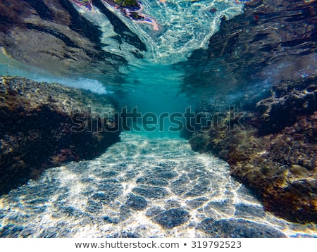 Scene with underwater and cliff Stock photo © colematt