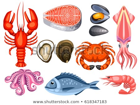 mollusk and bream fish set vector illustration stock photo © robuart