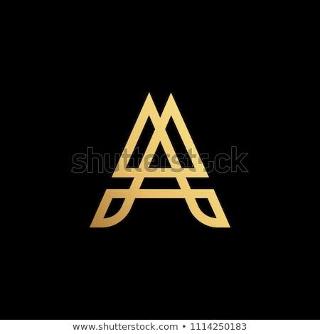 Verdubbelen brief vector logo icon ontwerp Stockfoto © blaskorizov